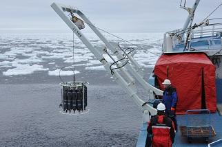 University Science Field Trip Shipping Worldwide